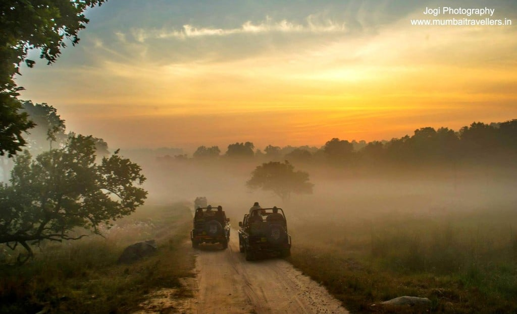 Weather at Tadoba national park