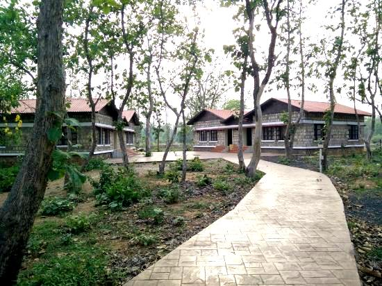 stay at Tadoba MTDC