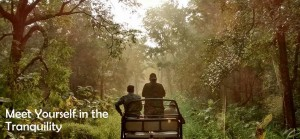 Meet yourself in tranquilty of Tadoba Tiger Reserve